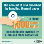 PGG BPA Infographic 1